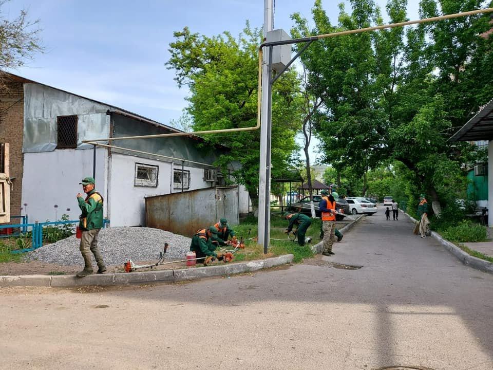 Фото пресс-службак акимата Шымкента